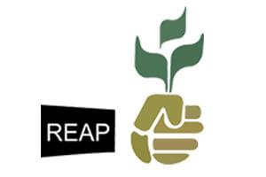 reap1